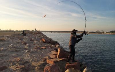 Señuelos Spinning – Pesca Spinning – Pesca con Paseantes