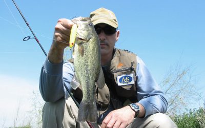 Spinning Lures: 4 Tips to Choose Yours
