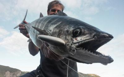 Los mejores señuelos para pescar a spinning