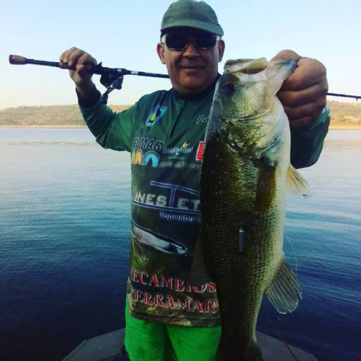 Pesca bass dropshot