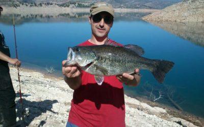 Señuelos para la pesca del bass