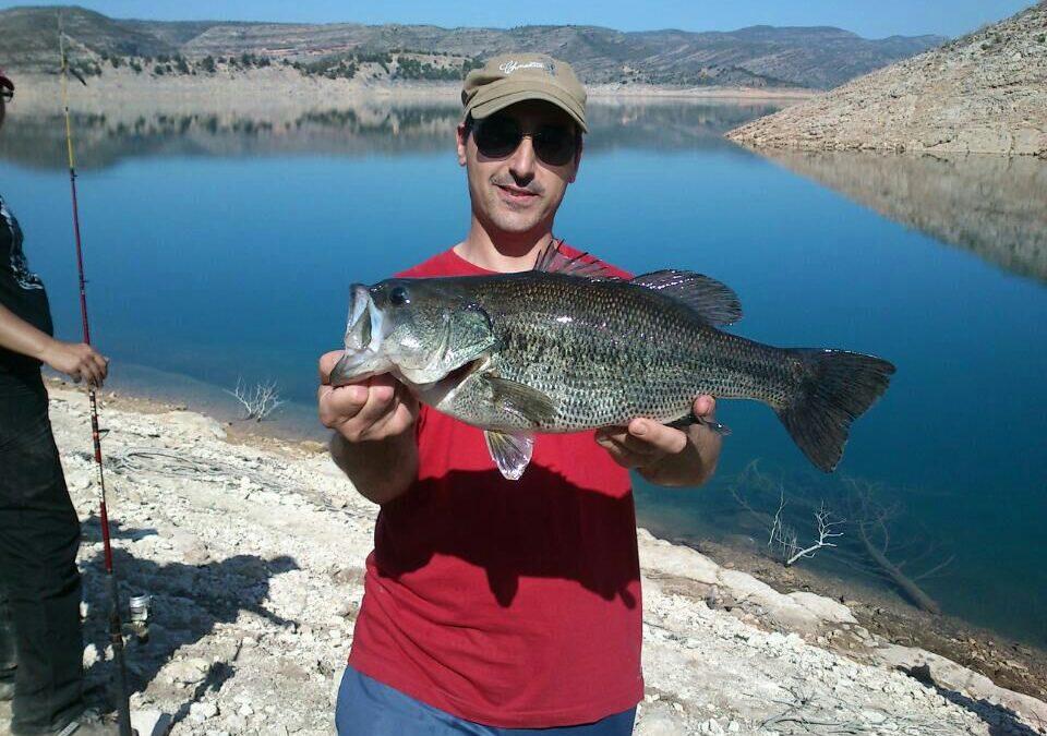 Black Bass – Señuelos Black bass a precios bajos.