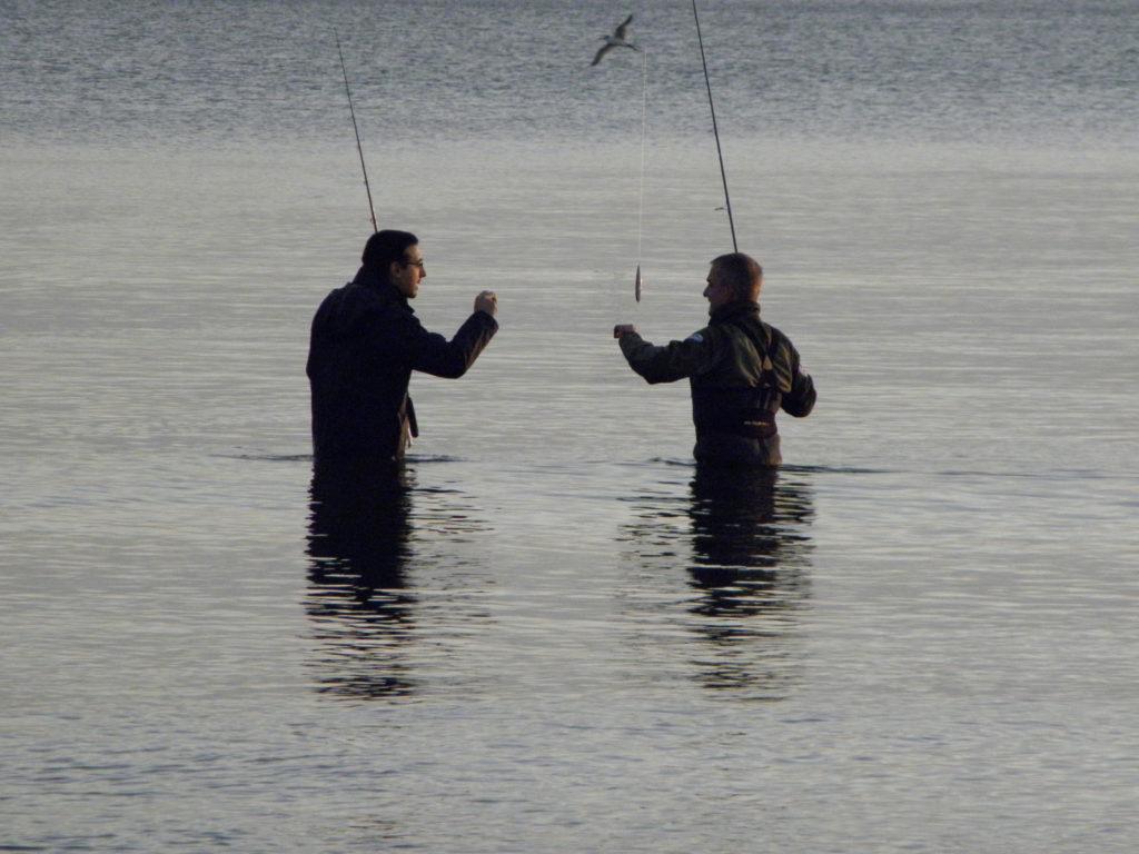 Pescando anjovas invierno