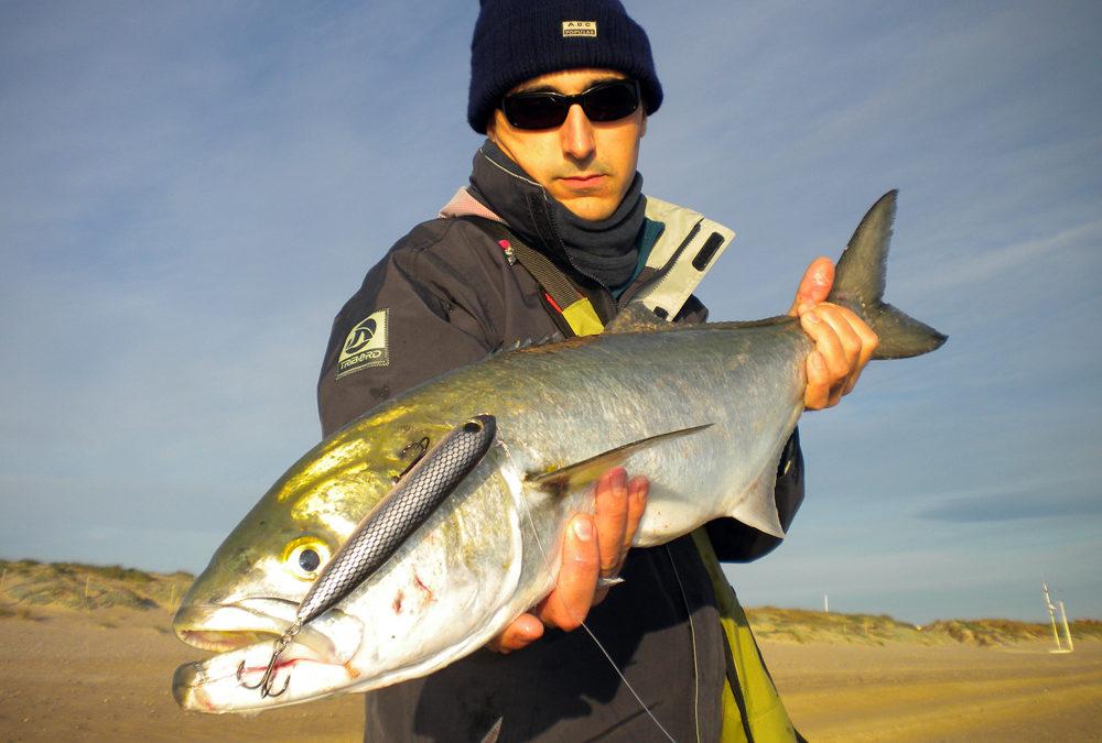 El secreto para pescar anjovas desde costa – Chinesteta ®