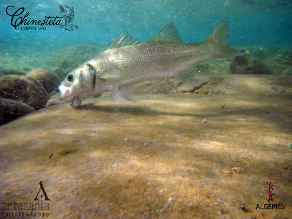 Señuelos rockfishing